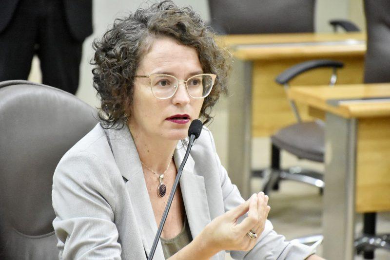 Deputada Isolda propõe taxar preços abusivos de insumos para conter disseminação do Coronavírus no RN