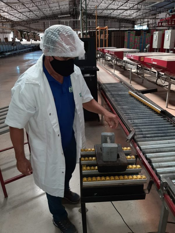 IPEM/RN fiscaliza balanças industriais em fazendas da Região Oeste