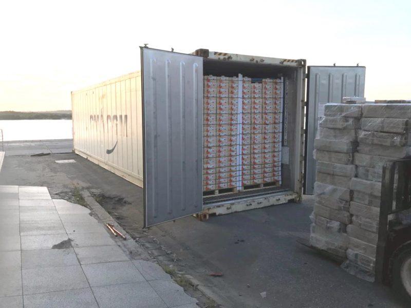 PF e Receita Federal apreendem 703,95 kg de cocaína no porto de Natal