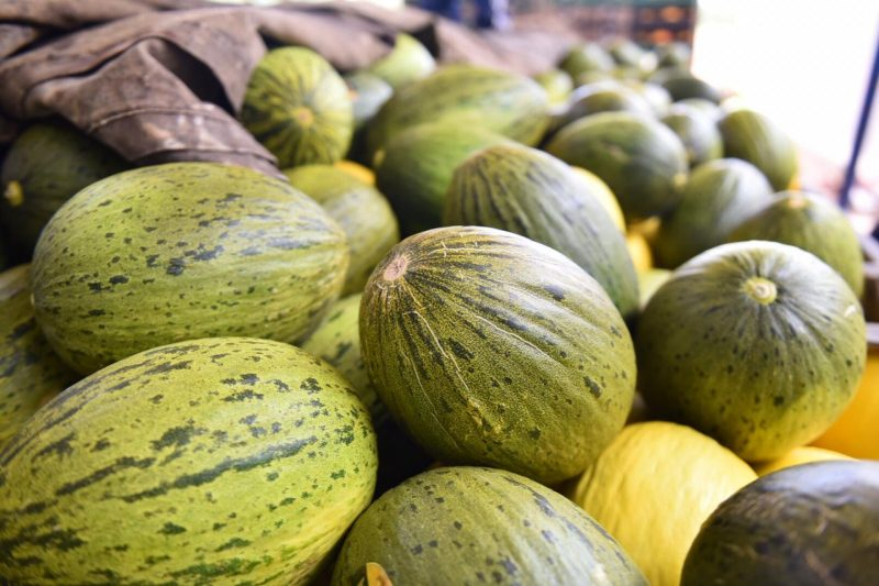 China recebe primeira carga de melão exportado do RN