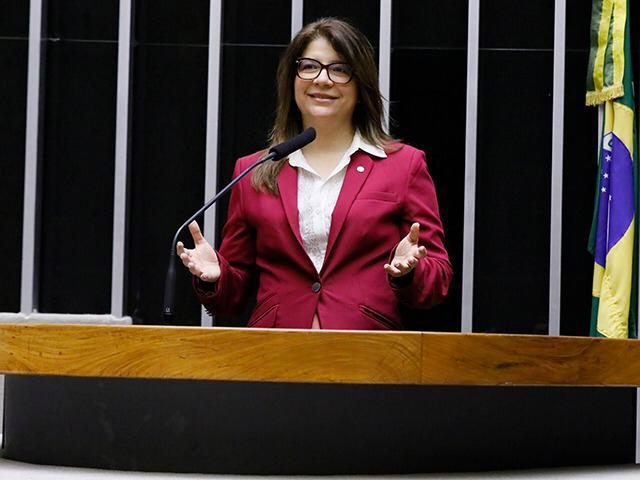 """Câmara aprova   PL da deputada Carla Dickson que institui o """"Agosto Lilás"""""""